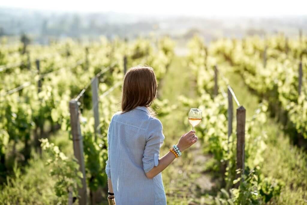 Best Wine Regions in France