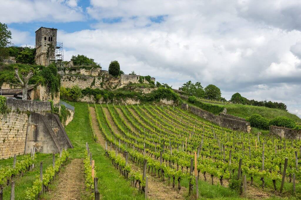Saint Emilion in Bordeaux Wine Region