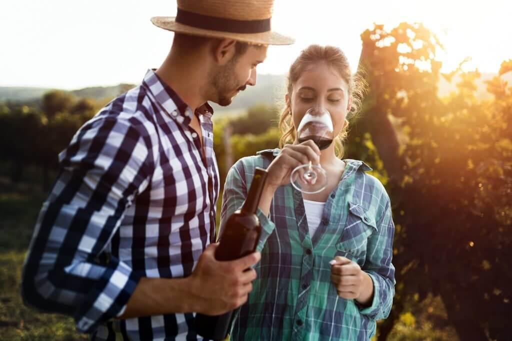 Wine Tasting in France
