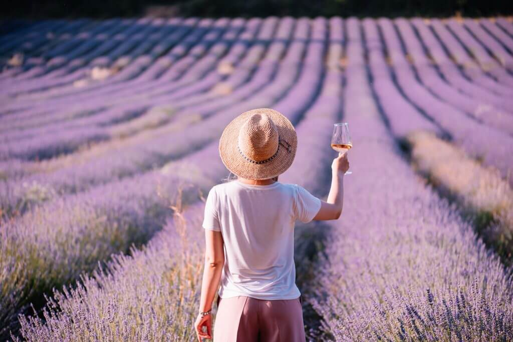 Wine of Provence, France