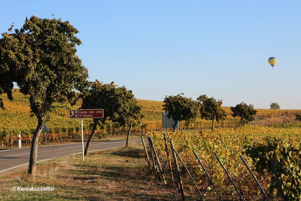 Alsace Wine Trail
