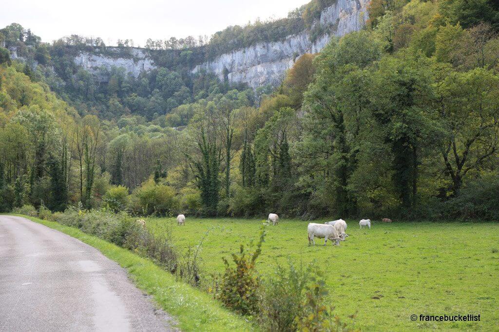 Road to Cascade des Tufs