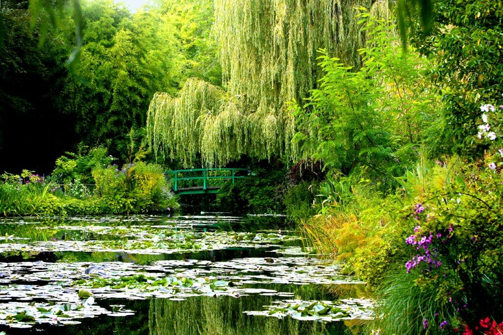 Monet's Garden - Giverny