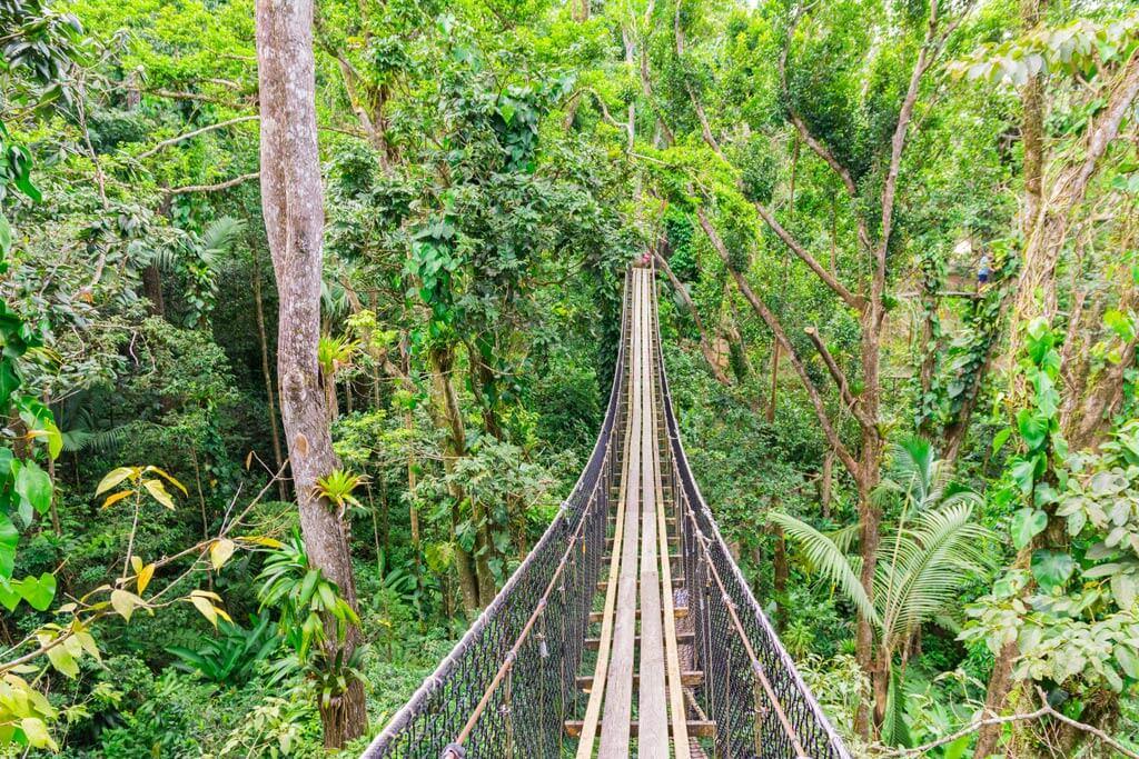 Parc des Mamelles - Guadeloupe