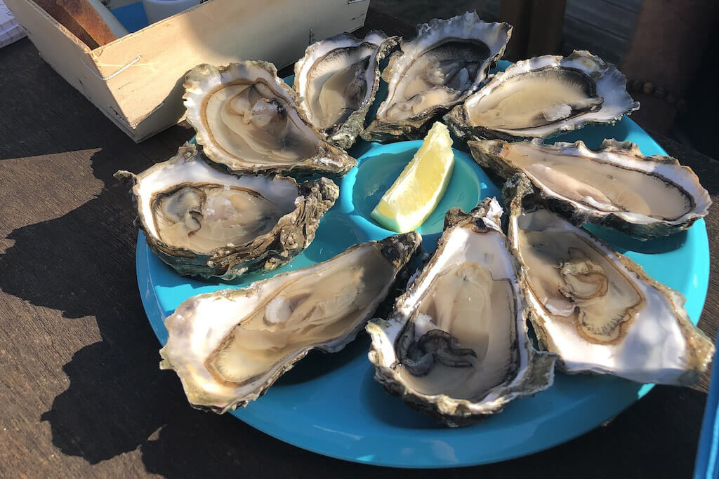 Oysters at Port des Barques
