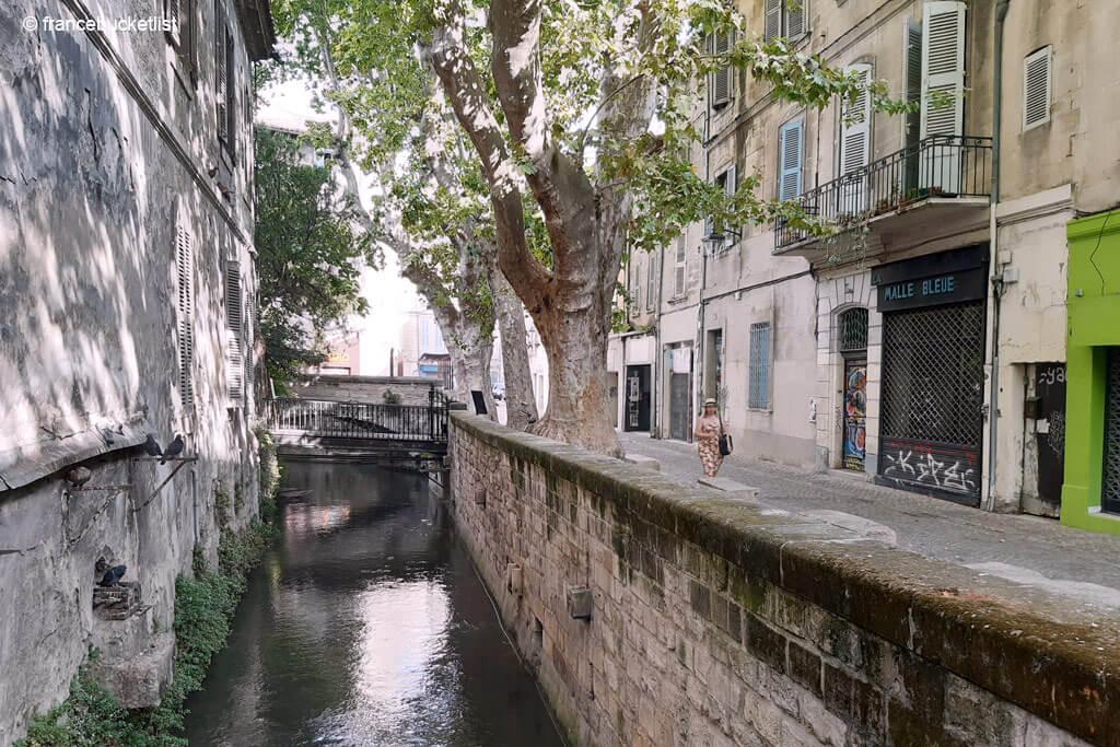 Rue des Teinturiers - Avignon